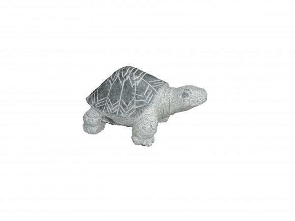 Granit-Schildkröte, grau