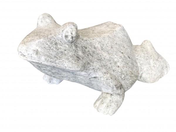 Marmor-Frosch wasserspeiend